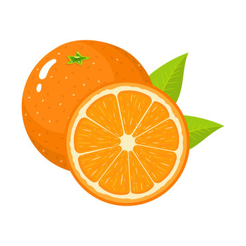 Set of fresh whole and half orange fruit with leaves isolated on white background. Tangerine. Organic fruit. Cartoon style. Vector illustration for any design.
