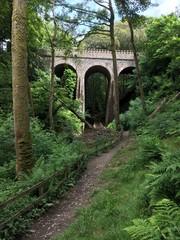Footpath below an arch bridge in Groudle Glen, Isle of Man