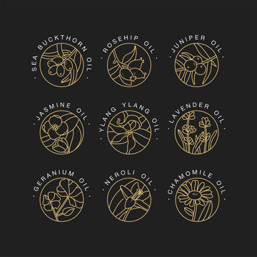 Vector set design templates and emblems - healthy and cosmetics oils. Different natural, organic oils. Logos in trendy linear style.