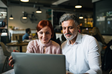 Fototapeta Man and woman having business meeting in a cafe, using laptop.