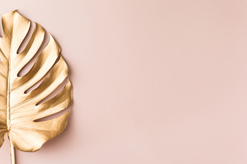Top view of gold tropical palm Monstera leaf on pink background. Flat lay, view from above. Minimal concept.