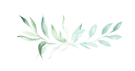 Illustration of watercolor drawing decorative elements of green plants and leaves in the form of frames on an isolated white background. Wall mural