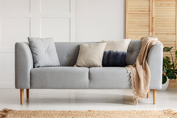 Various cushions on the sofa in stylish living room