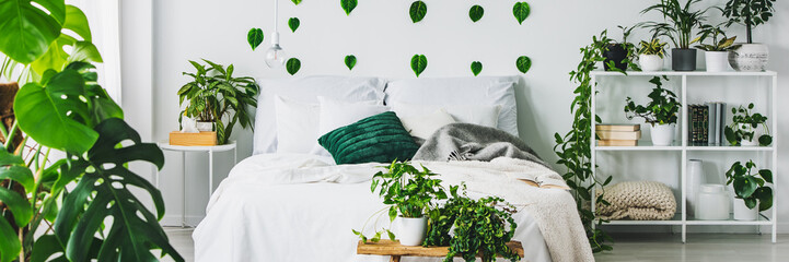 Panoramic view of white and green bedroom with king size bed and urban jungle Wall mural