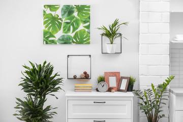 Stylish modern room interior with exotic houseplants Fototapete
