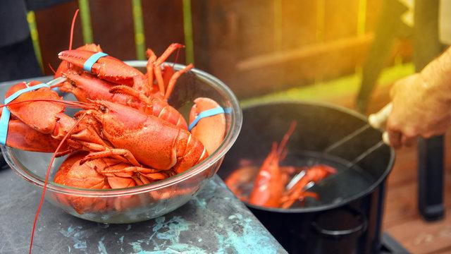 Lobster boil in backyard