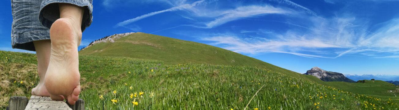 Randonnée en montagne - alpage du charmant som en chartreuse