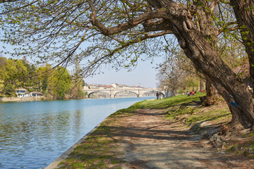 Po river bank path with trees and people in a sunny day, blue sky in Piedmont, Turin, Italy