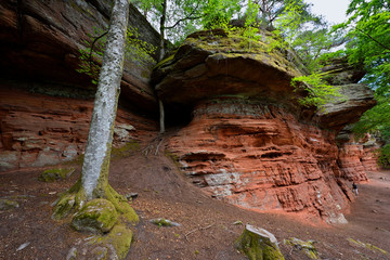 Altschlossfelsen in Rhineland-Palatinate in Germany. A striking sandstone rock formation in the forest.