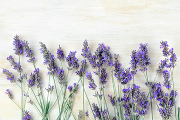 Fototapeta A fresh bouquet of blooming lavender flowers, shot from the top on a white wooden background with a place for text obraz
