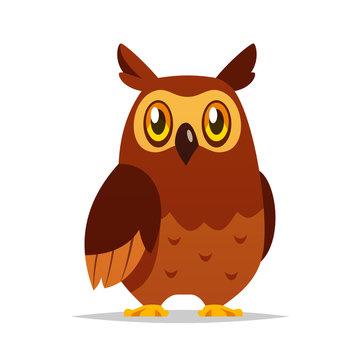 Cartoon owl vector isolated illustration
