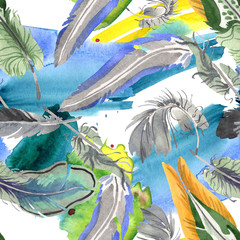 Fotobehang Paradijsvogel Watercolor bird feather from wing isolated. Aquarelle feather for background. Seamless background pattern.