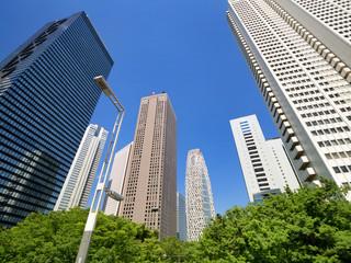 Fototapete - 新宿の高層ビル街