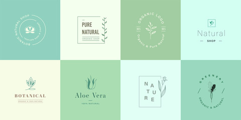 Set of natural and organic logo. Natural logo for branding, corporate identity, packaging and business card. Flat design cute nature logo.