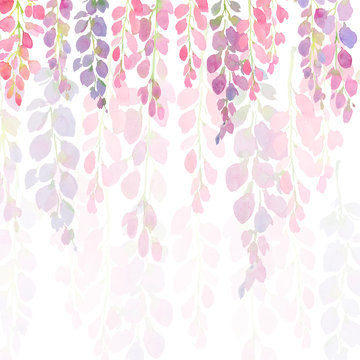 violet and pink wisteria flowers, watercolor hand painting on white background,