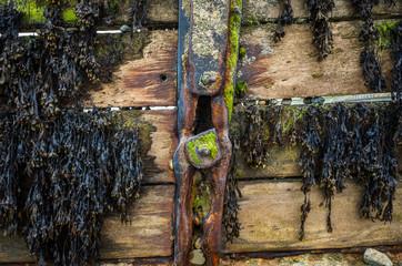 Wood Iron Sea Barrier