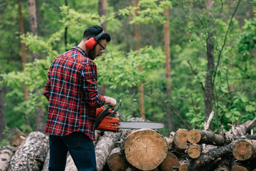 bearded lumberer in plaid shirt cutting trunks with chainsaw in wood