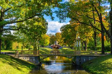 Saint Petersburg. Russia. Bridges in the summer park. Multicolored patterned bridges. Petersburg park architecture. Leningrad region. Pushkin. Surroundings of St. Petersburg. Travel to Russia. Wall mural