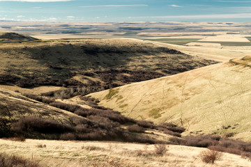 Looking Down from Cabbage Hill, Near Pendleton, Oregon
