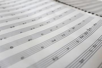 Handwritten music notes, music theory practice