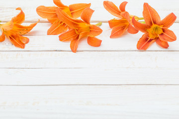 orange day-lily on wooden background