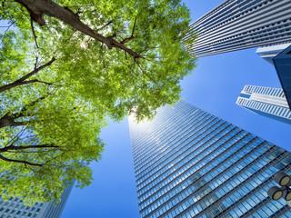 Wall Mural - 新緑の新宿高層ビル街