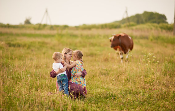Happy family, son and girl i in wheat field at sunset. The concept of organic farming and healthy lifestyle, healthy food, happiness and joy. Cow in the background