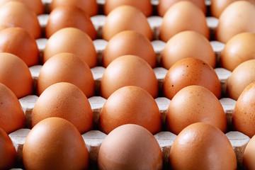 Eggs in carton box