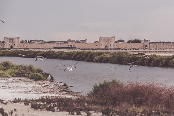 Aigues Mortes with Salt Works in Southern France