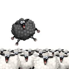 Fototapete - pecora nera fuori dal gregge