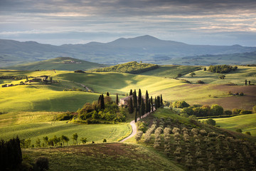 Photo sur Plexiglas Vieux rose Countryside near Pienza, Tuscany, Italy