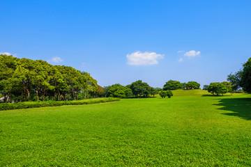 千葉ポートパークの風景