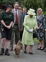Queen Elizabeth II visits Gorgie City Farm