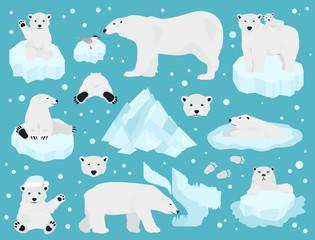 Polar bears set, teddy bear in Arctic