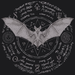 Vector illustration with a bat with open wings. Witchcraft magic, occult attributes, alchemy symbols. Night creature with fangs. Flying vampire on the background of a star and magical inscriptions