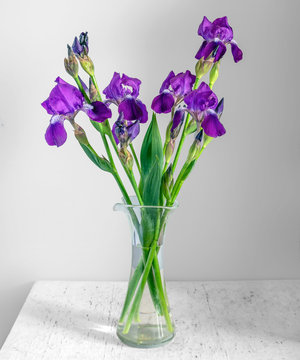 Still life with a bouquet of irises. Vintage.
