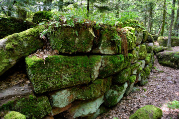 Pagan wall in the wood near st. odilie monastery in Alsace, France. One of the most mysterious locations in Europe.