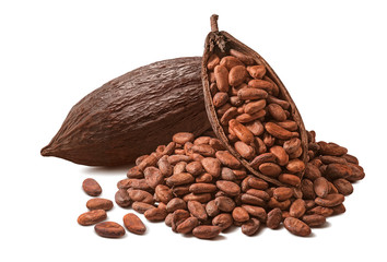 Cocoa pod and many raw beans isolated on white background
