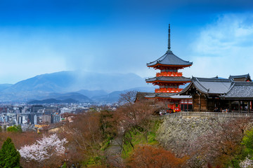 Wall Mural - Red pagoda and Kyoto cityscape in Japan.
