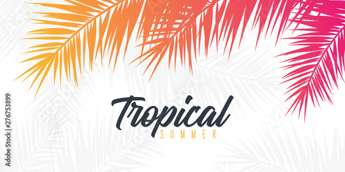 Wall mural Summer Tropical palm leaves. Exotic palms tree. Floral Background.
