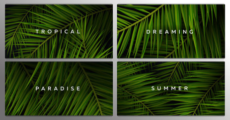 Wall Mural - Set of Tropical palm leaves. Exotic palms tree. Dark Floral Backgrounds.