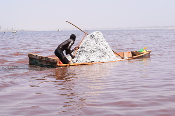 An African man harvests salt in the pink lake, known as Lake Ratba, Lake Rose and Lac Rose