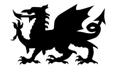 Fototapeta Welsh Dragon Silhouette obraz