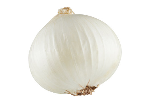 white onions isolated