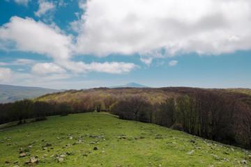 Wall Mural - Mountain Vernal Landscape