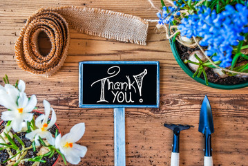 Sign With Egnlish Calligraphy Thank You. Spring Flowers Like Grape Hyacinth And Crocus. Gardening Tools Like Rake And Shovel