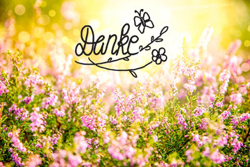 German Calligraphy Danke Means Thank You. Erica Flower Field Or Meadow. Sunny Spring Or Summer Season.
