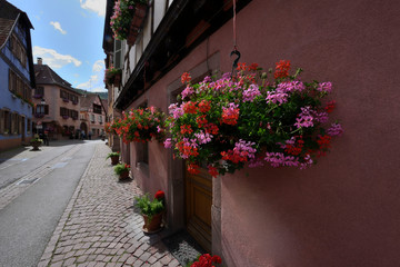 Alley of old colorful half-timbered houses in alsace in france.