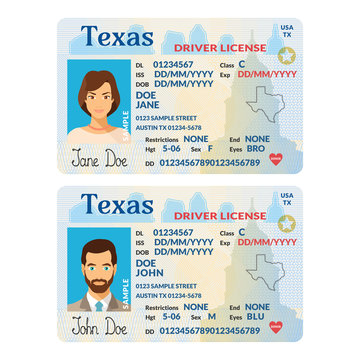 Vector template of sample driver license plastic card for USA Texas