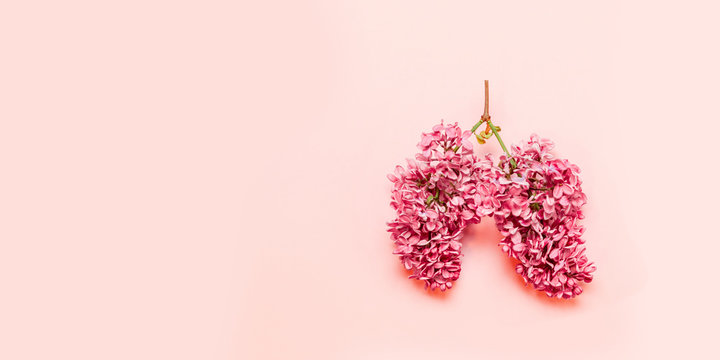 Medical concept of pink flowers in the shape of a lung on a light pink background with place for text. Flowering sprig of lilac. Coronavirus, Covid-19 concept